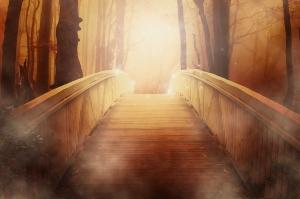Bridge19513_640